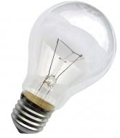 Лампа накаливания ЛОН(100) 40 W