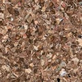 Линолеум Tarkett iQ Monolit CMONI-913